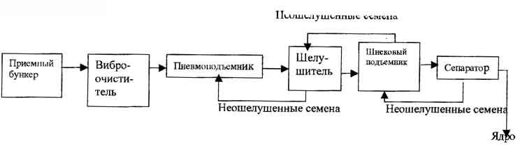 (6) - сортировка ядра и